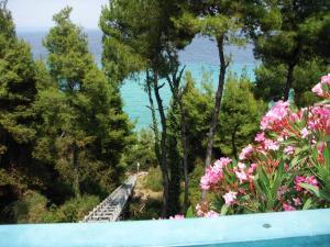 obrázek - Villa Athitos