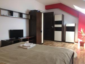 Apartament Daniel Fratila, Apartmány  Sibiu - big - 3
