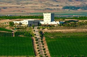 Chateau Pago De Cirsus