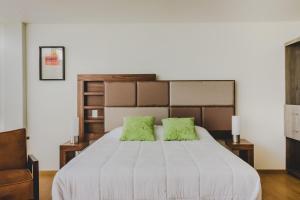 Millenium Plaza & Suites, Aparthotels  San Luis Potosí - big - 38
