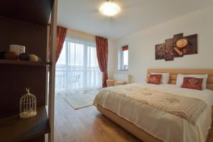 Nisa Residence, Apartments  Braşov - big - 31