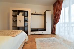 Nisa Residence, Apartments  Braşov - big - 29
