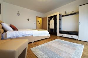 Nisa Residence, Apartments  Braşov - big - 26