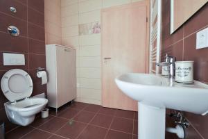 Nisa Residence, Apartments  Braşov - big - 16