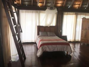 Rhincodon Typus, Hotel  Isola Holbox - big - 32