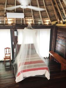 Rhincodon Typus, Hotel  Isola Holbox - big - 29