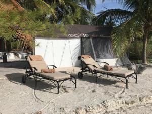 Rhincodon Typus, Hotel  Isola Holbox - big - 2
