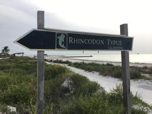 Rhincodon Typus, Hotel  Isola Holbox - big - 1