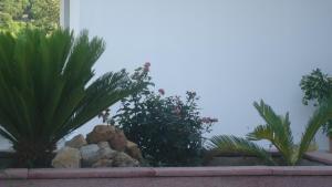 Salakos Home, Holiday homes  Sálakos - big - 12