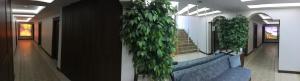 My Home Uzungöl