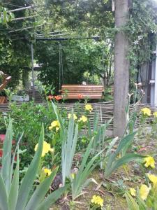 Гостевой дом Ольга - фото 25