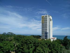 Sofiya's Apartment, Apartments  Playa Coronado - big - 1