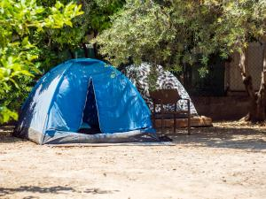obrázek - Trip Yard Camping