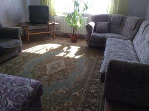 Apartment Nikitenko II, Appartamenti  Grodno - big - 9