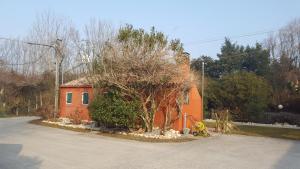 La casa di alice