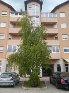 Apartman Babic, Apartments  Livno - big - 10