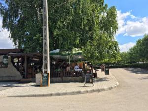 Residence at lake Balaton, Дома для отпуска  Шиофок - big - 26