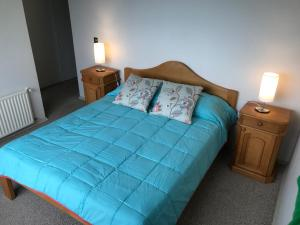 El Nido Villarrica Apartment, Appartamenti  Villarrica - big - 9