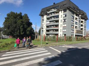 El Nido Villarrica Apartment, Appartamenti  Villarrica - big - 7