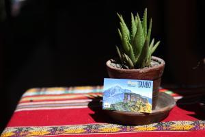Munay Tambo Casa Hospedaje, Penzióny  Ollantaytambo - big - 12