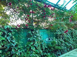 Гостевой дом На Сухумском Шоссе 17 - фото 7