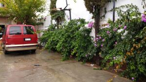 La Casa de las Bugambilias, Penziony  Ciudad Juárez - big - 22