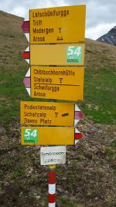 Ferienwohnung Sesvenna, Apartments  Davos - big - 24