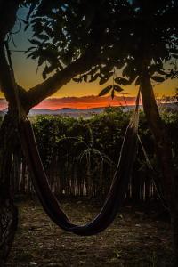obrázek - Camping Canto Cambaxirra