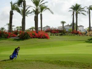 Coming Home - Penthouses La Torre Golf Resort, Apartmanok  Roldán - big - 74