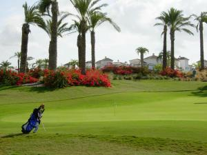 Coming Home - Penthouses La Torre Golf Resort, Apartmány  Roldán - big - 74