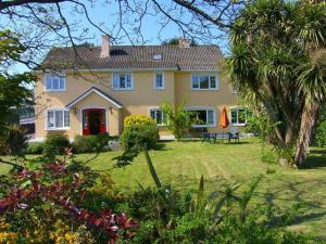 Ashe's B&B, Bed and Breakfasts  Dingle - big - 62