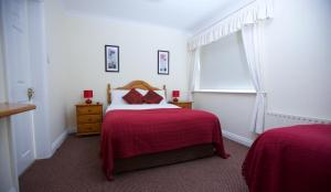 Ashe's B&B, Bed and Breakfasts  Dingle - big - 22