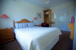 Ashe's B&B, Bed and Breakfasts  Dingle - big - 80
