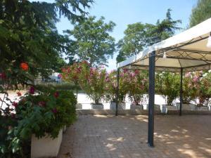 Al Casolare, Hotely  Corinaldo - big - 29