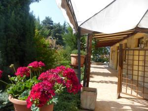 Al Casolare, Hotely  Corinaldo - big - 7