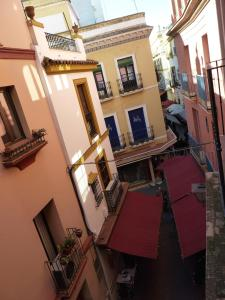 ALMIRANTE BONIFAZ 3, Apartments  Seville - big - 13