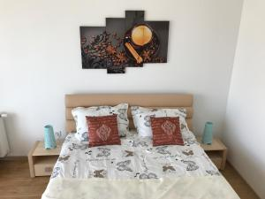 Nisa Residence, Apartments  Braşov - big - 2