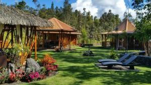 Volcano Mountain Retreat, Bed & Breakfasts  Fern Acres - big - 20
