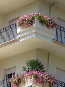Hotel Luciana, Szállodák  Misano Adriatico - big - 22