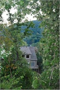 Mountain Renewal Home