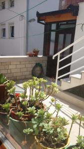Guest House Stari - фото 8