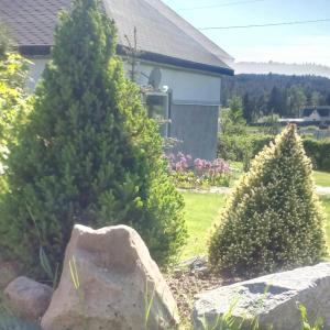 Riekkalansaari Cottage, Vidiecke domy  Sortavala - big - 28