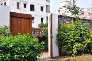 International Travellers' Hostel, Hostely  Varanasi - big - 6