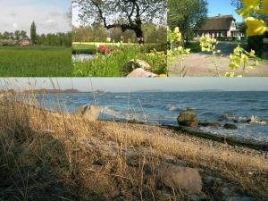 Hof-Ruegentreu-Reetdach-Oase-EG-Wohnung-Rosengarten