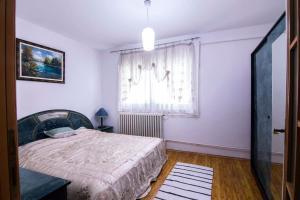 Black Swan Apartment - фото 9