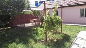 Zhemchuzhinka Guest House, Affittacamere  Blagoveshchenskoye - big - 19