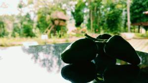 Palkadavu Warium Villa, Holiday homes  Mananthavady - big - 29