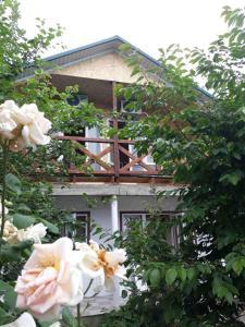 obrázek - U Andreya Guest House