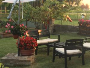 B&B Happiness in the Country - Accommodation - Brescello
