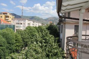 Hotel Vila Alfa, Hotel  Korçë - big - 3